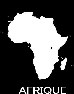 cognac-afrique